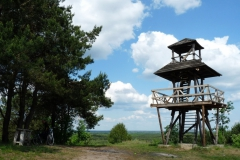 Wieża-widokowa w Woli Uhruskiej. Fot. R. Lesiuk archiwum UMWL